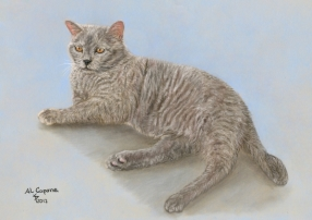British Shorthair cat art