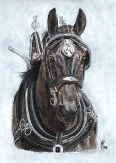 Percheron horse painting