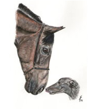 horse and greyhound