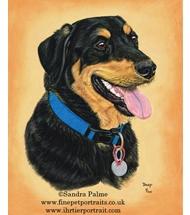 Black and Tan Dog pastel portrait