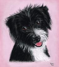 Rescue Dog pastel portrait