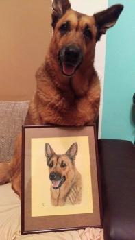 Dog Akira