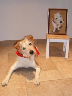 Filou with portrait