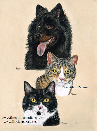 Dog with Cats Pastel Portrait