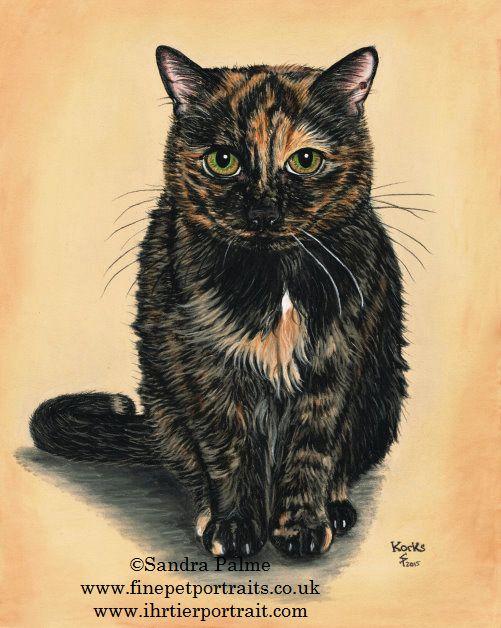 Tortoiseshell Cat Portrait