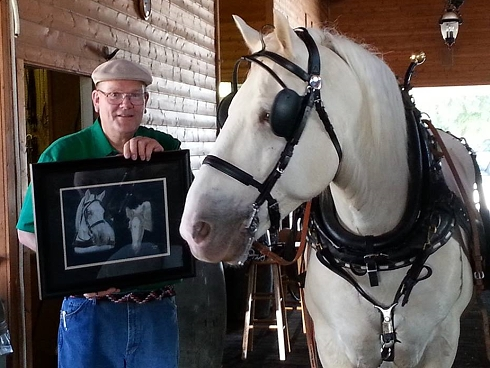 Owner Bill proudly showing American Cream Draft Horse 'Lucky' his portrait.