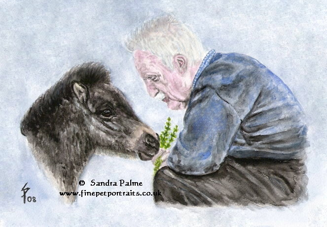 Man and Shetland Pony foal watercolour