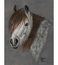 Horses Pastel