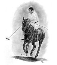 Polo Pony charcoal portrait