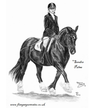 Welsh Cob and Rider charcoal portrait