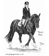 Welsh Cob charcoal portrait