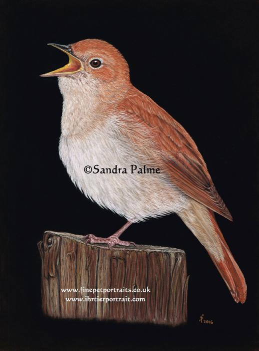 nightingale painting