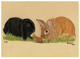 Rabbits pastel portrait