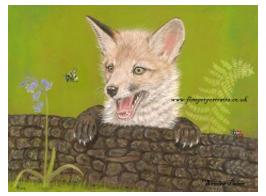 Fox Cub pastel portrait