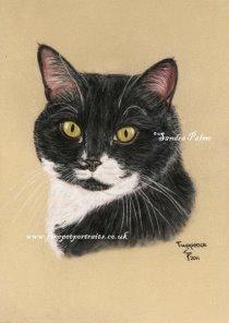 Cat Tuppence portrait