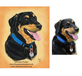 Dog portrait with Reference photo