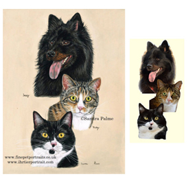 Dog and Cats Portrait with Reference Photo