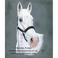 Horse Pastels Portrait