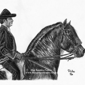 Charcoal drawing Spanish horse & rider