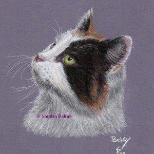 Cat Portrait pastels