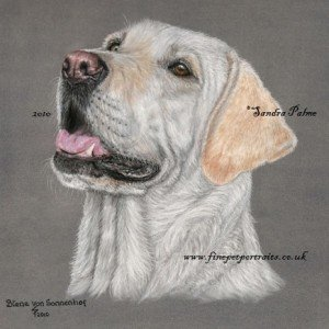 Yellow Labrador painting