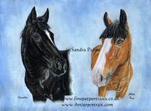 Horses Charlie Alfie Pastel Portrait