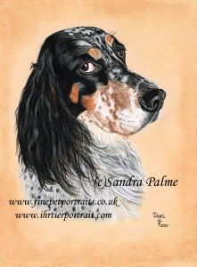 English Setter dog portrait in pastels
