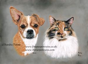 Dog Elvis and Cat Barley Pastel Portrait