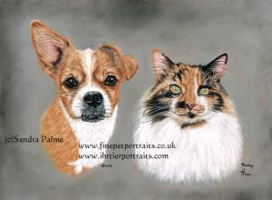 Dog and Cat portrait
