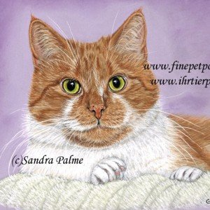 Cat portrait pastel