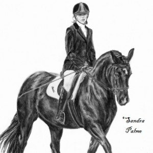 Horse & rider charcoal sketch