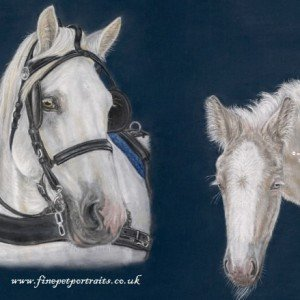 American Cream Draft Horse painting