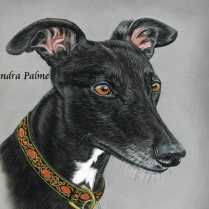Black Greyhound painting