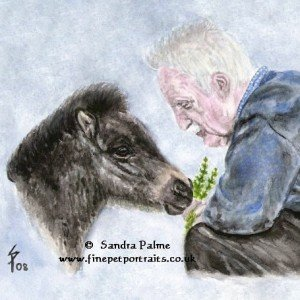 Man with Shetland Pony foal ref. photo slawik.com