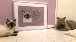 Cats with portrait
