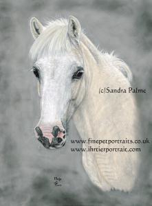 Pastel horse painting Mojo Portrait