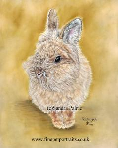 Radagast Rabbit Portrait