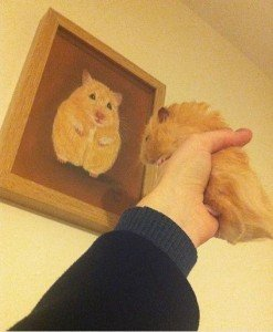 Hamster Ryback with portrait