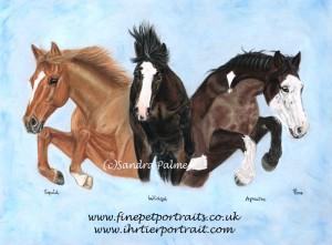 Horses montage portrait