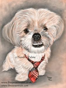 Toby Portrait