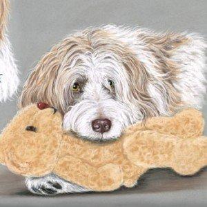 French Shepherd Dog drawing