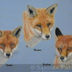 Red Foxes pastel painting