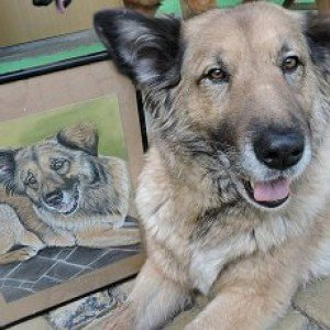 Dog Lisa with pastel portrait